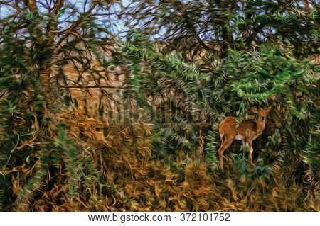 Gazelle Hidden In The Green Bush On The Serengeti National Park. A Conservation Area In The African