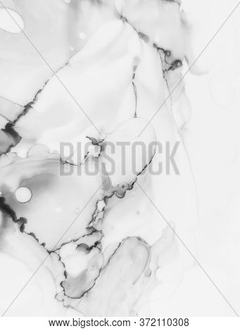 Smoky Alcohol Ink Background. Abstract Ink Art. Transparent Natural Luxury Marble. Black, White Wate