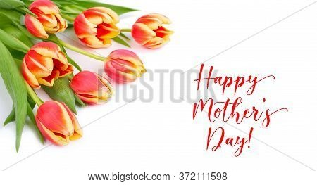 Text Happy Mothers Day On White Background. Bunch Of Red And Yellow Stripy Tulips In The Corner, Iso