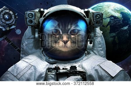 Astronaut Cat In Outer Space. Spacewalk. Elements Of This Image Furnished By Nasa