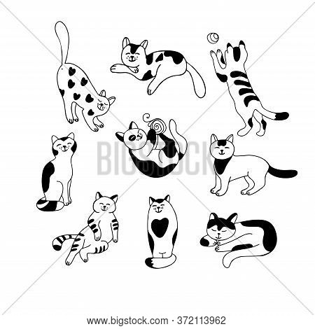 Set With Cute Cats Isolated On White Background. Different Poses And Tempers. Lazy, Playful, Affecti