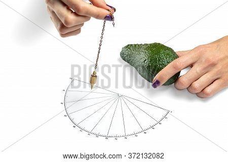 Dowser With Hand-held Pendulum Checks The Usefulness Of Avocado Fruit.