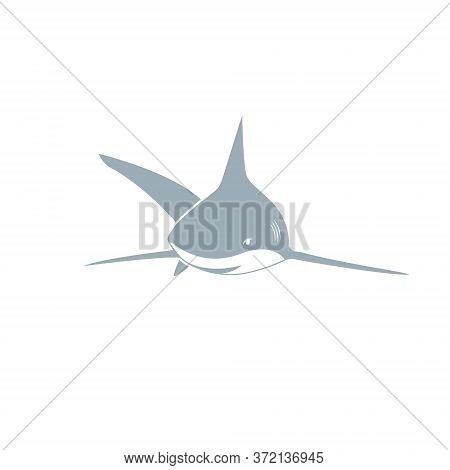 Shark Vector | Shark Grey, Shark Bite, Simple Shark, Baby Shark, Illustration