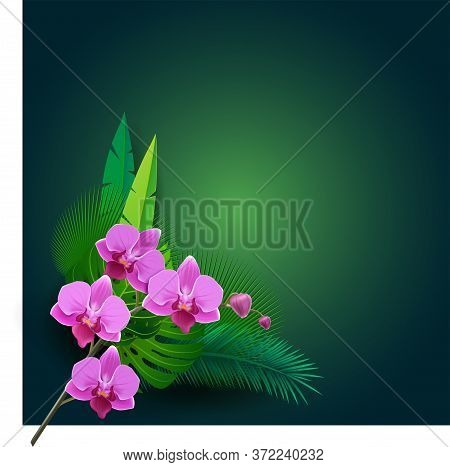Vector Illustration With 3d Flowers. Beautiful Background With Tropical Plants On Green. Composition