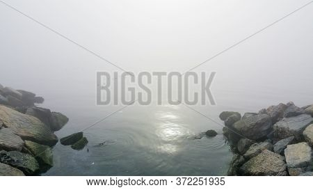 Mystical Fog Over The Sea With Mossy Rocks And Bird Silhouettes.