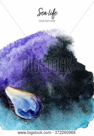 Invitation Design Template With Shellfish Watercolor Hand Drawn Illustration On Splash Background Te