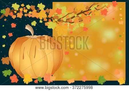 Autumn Leaves And Pumpkin Banner With Copy Space. Happy Thanksgiving Day. Thanksgiving Autumn Sale W