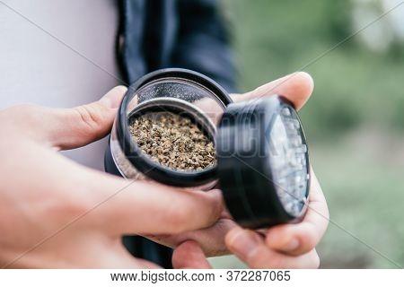 The Pot Leaves On Buds. Cannabis Nature Bud. Sativa Thc Cbd. Marijuana Weed Bud And Grinder.