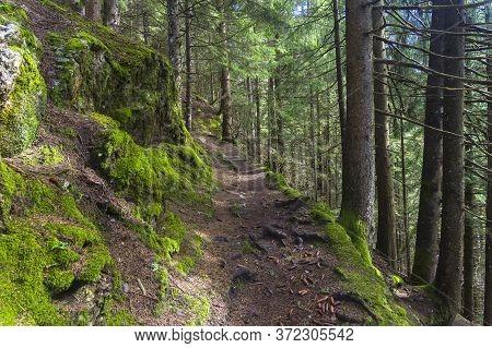 Hillside Trail In Austrian Alps. Surroundings Of The Mayrhofen Ski Resort,  Tyrol, Austria.