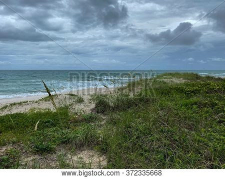 Sea Oats  Overlooking The Beach And Ocean On A Beautiful Cloudy Day Along The Shoreline On North Hut