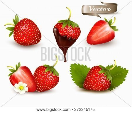 Whole And Slice Of Strawberry, Strawberry In A Chocolate. Realistic Transparent Isolated Vector Set.