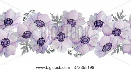 Watercolor Hand Drawn Seamless Horizontal Border Of Purple Violet Lavender Anemone Buttercup Flowers