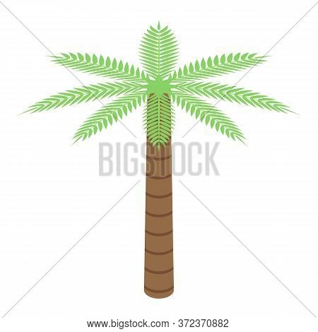 Egypt Palm Tree Icon. Isometric Of Egypt Palm Tree Vector Icon For Web Design Isolated On White Back