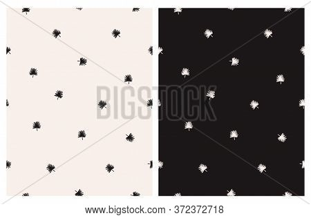 Abstract Palm Leaves Seamless Vector Pattern. Black And Beige Tropical Minimalist Design. Aloha Part