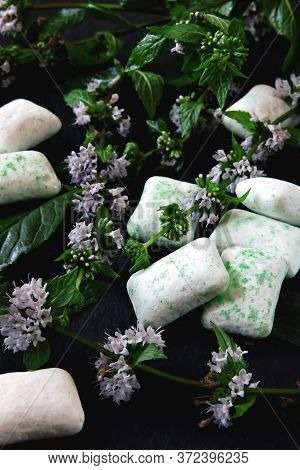 Chewing Gum Pads And Fresh Mint Leaves. Mint Bubble Gum Concept. Dental And Gum Health.