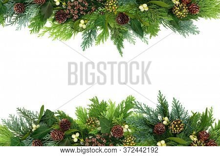 Traditional winter greenery background border with cedar cypress fir leaves, mistletoe, ivy & pine cones on white. Composition for Christmas & New Year. Flat lay, top view, copy space.
