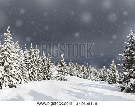 Winter Landscape Of Mountains With Of Fir Tree Forest In Snow With Path Under Forthcoming Snow Winds