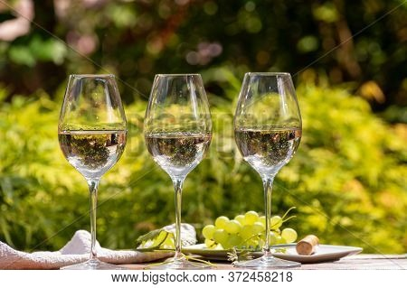 Tasting Of Pinot Gridgio Rose Wine On Winery In Veneto, Italy. Glasses Of Cold Dry Wine Served Outdo
