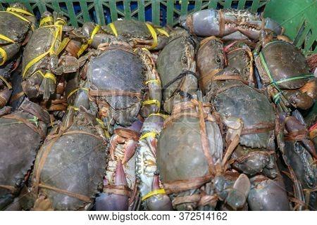 Pattern Of Fresh Crabs Selling On A Seafood Counter In Jimbaran. Pasar Ikan Kedonganan - Bali Beach.