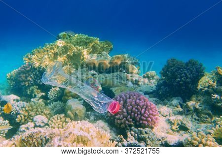 Beautiful Coral Reef With Diversity Of Hard Corals Polluted With Plastic Botle - Environmental Prote