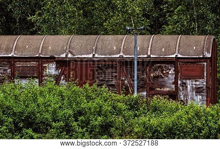 The Old,rusty Waggon Of A Train Between Green Bushes And Trees