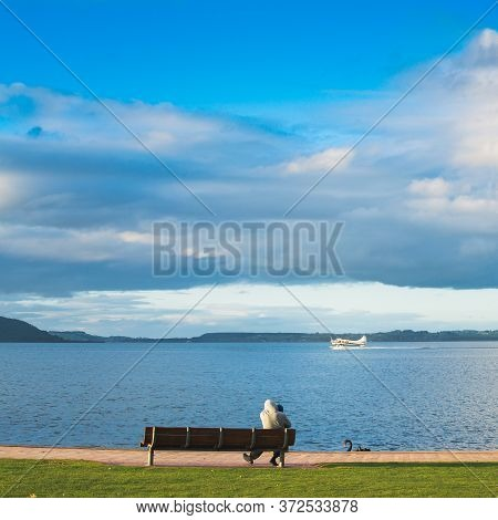 A Father And A Child Sitting On A Lakeside Bench And Watching A Seaplane Speeding Up To Take Off Fro