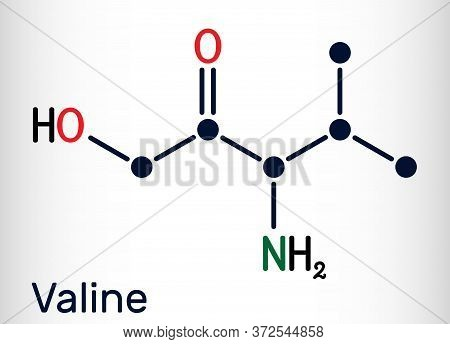 Valine, Val, L-valine Amino Acid Molecule. It Is Used In The Biosynthesis Of Proteins. Structural Ch