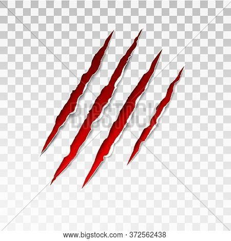 Animal Red Scratches On Transparent Background. Paper Claws Animal Scratching. Claw Scratch Mark. An