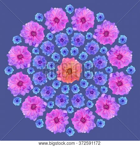 Mandala From Dried Pressed Flowers, Petals. Briar, Wild Rose. Mandala Is Symbol Of Buddhism, Hinduis