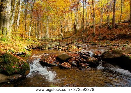 River On The Autumn Sunny Day. Wonderful Landscape. Forest In Fall Colors. Mossy Rocks On The Shore.