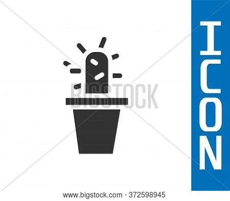 Grey Cactus And Succulent In Pot Icon Isolated On White Background. Plant Growing In A Pot. Potted P
