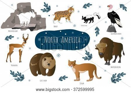Vector Collection With North American Animals. Illustration With Cute Animals For Children. Mountain