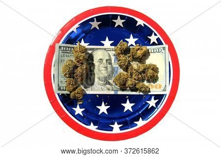 Marijuana Buds on an American 100.00 bill. Red White and Blue Paper Plate with a One Hundred Dollar Bill and Cannabis Sativa Flower Buds. Isolated on white.