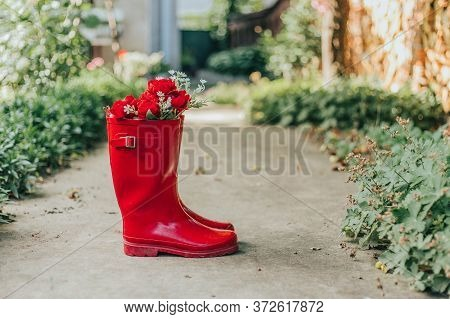 Red Rainy Rubber Boots With Red Flowers Inside Them. Copy Space
