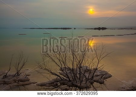 Evaporated salt protrudes above water. Israel, Dead Sea. The foggy sun is reflected in the smooth surface of the water. The concept of active, environmental and photo tourism