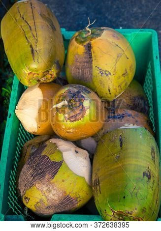 Fresh Coconuts At A Market In Hilo Hawaii