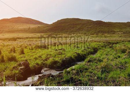 Dried Creek In A Green Meadow. Summer Landscape.
