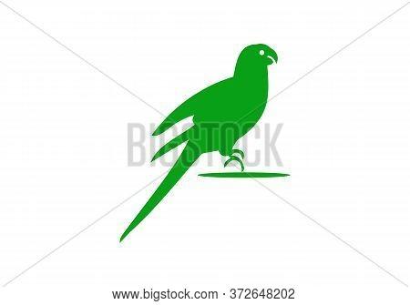 Green Parrot Logo Design, Parrot Icon Vector Illustration