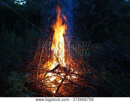 Burning Fire. The Bonfire Burns In The Forest. Texture Of Burning Fire. Bonfire For Cooking In The F