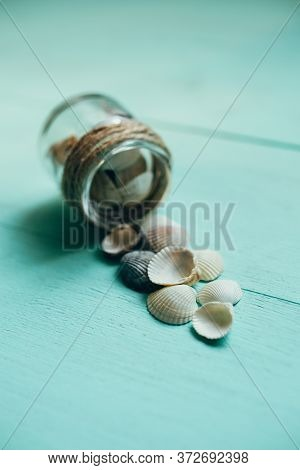 Sea Shells On A Sea Wooden Background Of Turquoise Color.