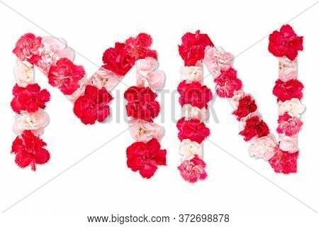 Flower Font Alphabet M N Set (collection A-z), Made From Real Carnation Flowers Pink, Red Color With