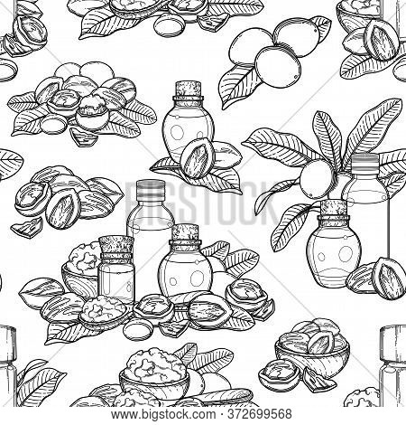 Seamless Pattern Of Graphic Essential Oils Decorated With Shea Nuts And Leaves