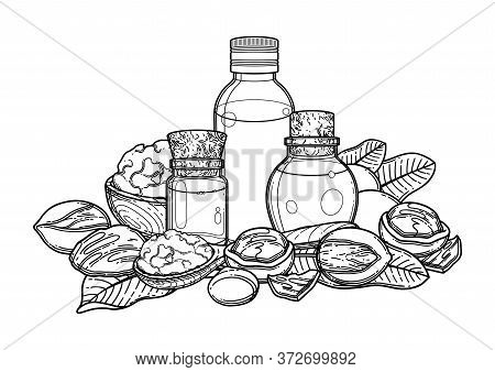 Graphic Oil Bottles Surrounded By Shea Plants And Butter Inside The Wooden Dishes