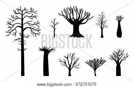 Naked Tree. Winter Trees Silhouette, Dead Nature And Empty Black Trunks. Simple Dry Bare Branched Fo