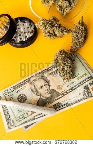 Cannabis In Economics. Sativa Thc Cbd. Money Weed. Marijuana Weed Bud And Grinder. Indica Medical He