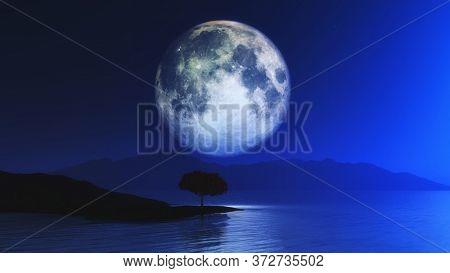 3D render of a landscape with tree against moonlit sky