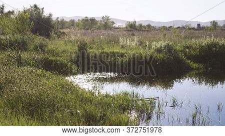 Summer Landscape. Steppe Background. Evening Light. Steppe Lake.