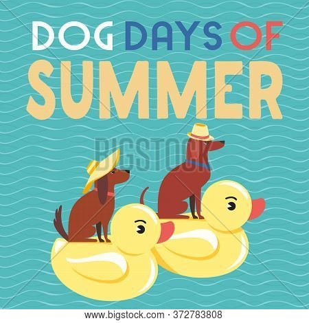 Dog Days Of Summer Time For Adventure. Cute Comic Cartoon. Colorful Humor Retro Style. Canine In Sun