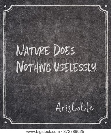Nature Does Nothing Uselessly - Ancient Greek Philosopher Aristotle Quote Written On Framed Chalkboa