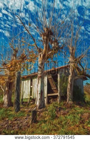 Rural Landscape With A Small Shabby Shack Next To Leafless Plane Trees, In A Vineyard Near Bento Gon